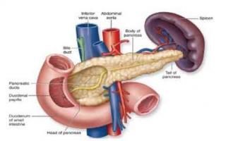 Что это такое панкреатит