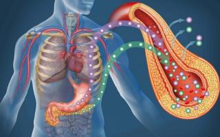 Поджелудочная железа симптомы заболевания