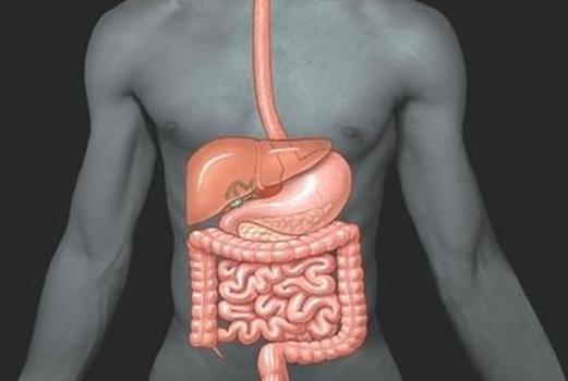 Болит желудок от антибиотика какой термостат стоит на заз шанс 1 3 двигатель