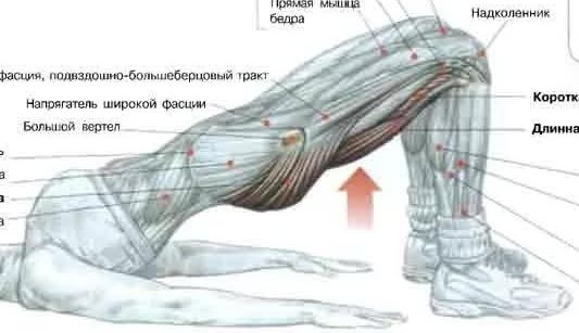 Болит желудок лежа на спине