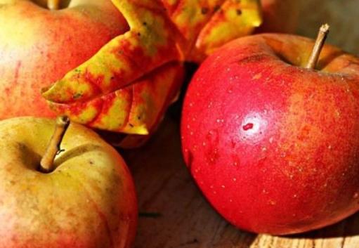 Можно ли есть при гастрите яблоки