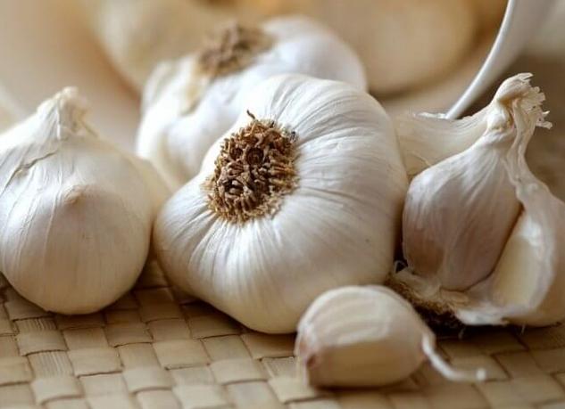 Можно или нет употреблять чеснок и вареный лук при гастрите с повышенной кислотностью
