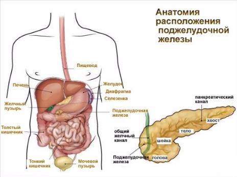 Холецистит панкреатит хронический - лечение панкреатита и ...